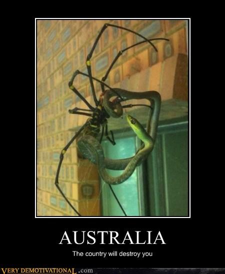 John The Aussie